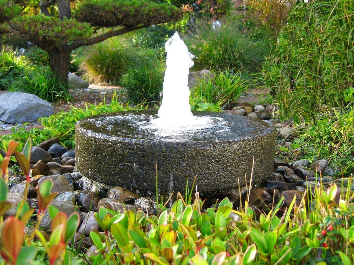 Варианты перестройки водоема в вашем саду