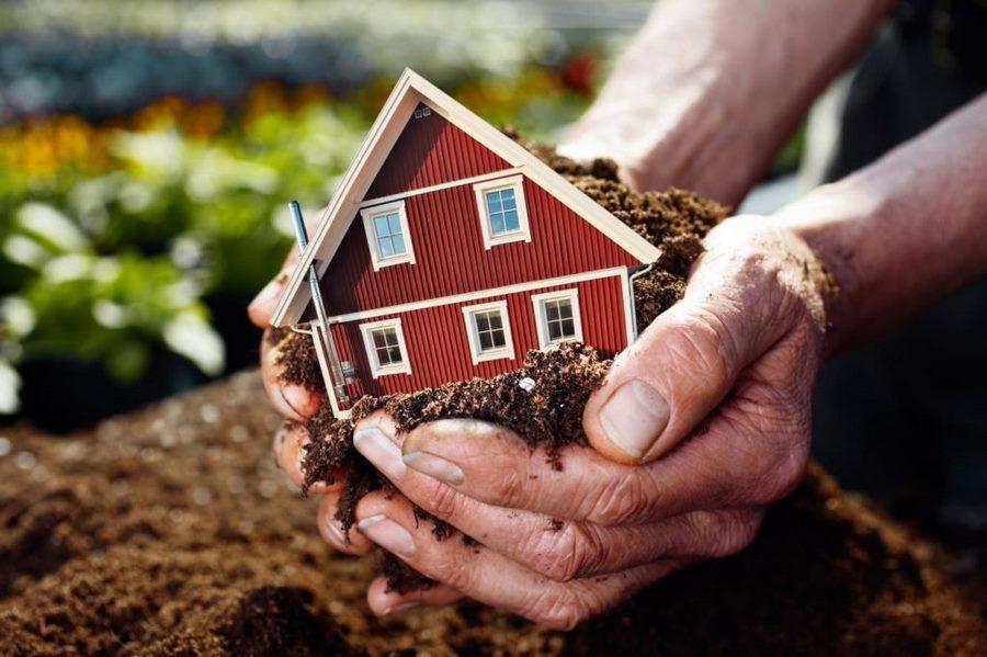 Земельные ресурсы и их использование