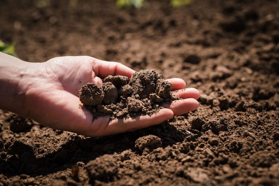Радиоактивные свойства почв