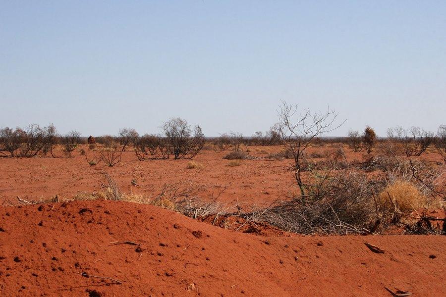 Бурые почвы полупустынной зоны