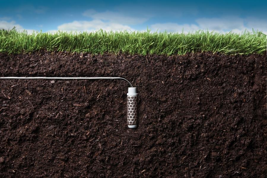 Почвы пойм