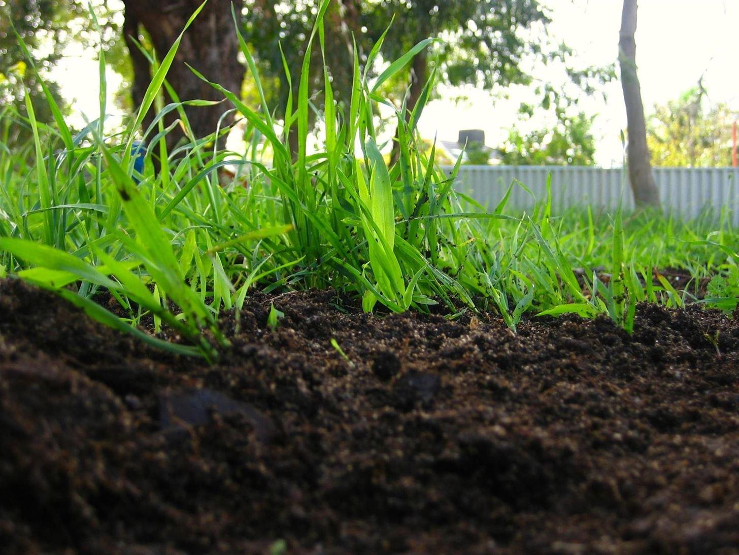 Происхождение и состав минеральной части почв