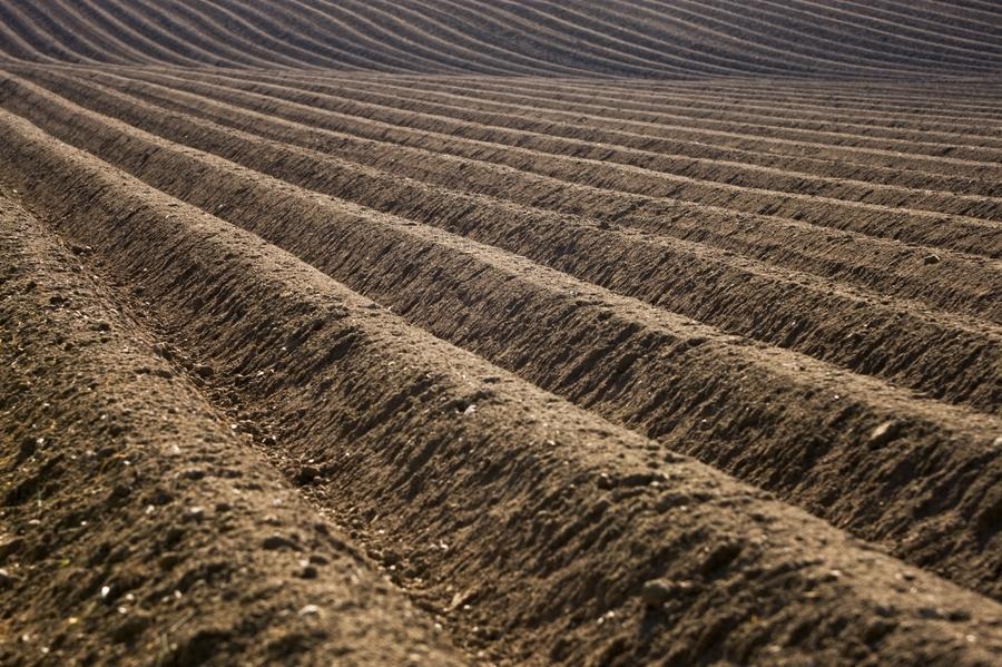 Возникновение и краткая история развития почвоведения