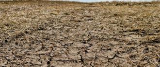 Почва недостаточного увлажнения