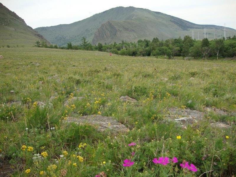Почвы горных областей