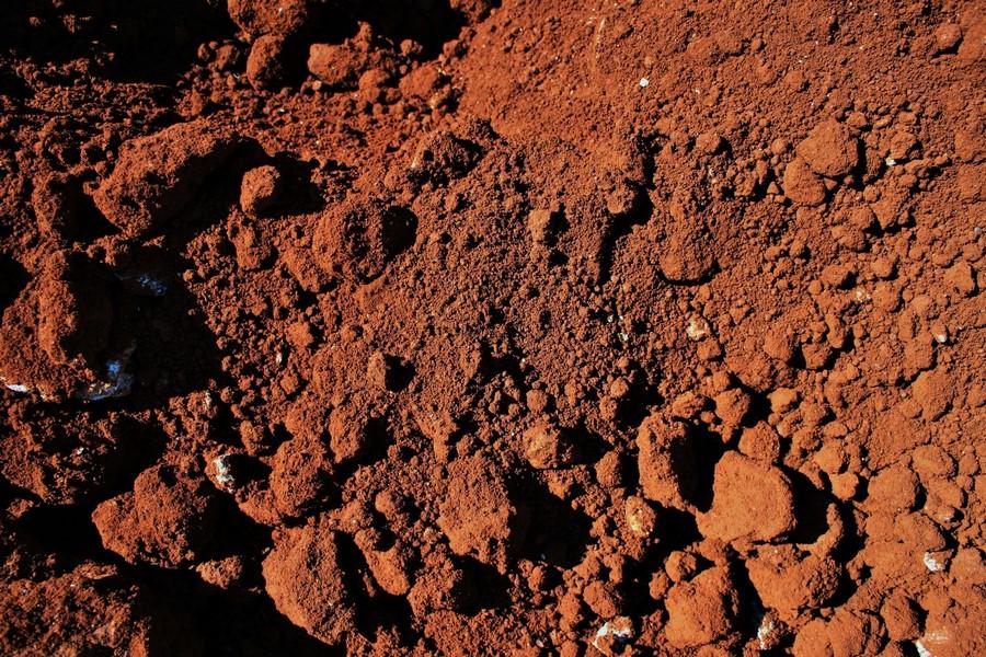 Методы оценки качества почв