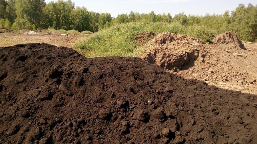 Болотные почвы