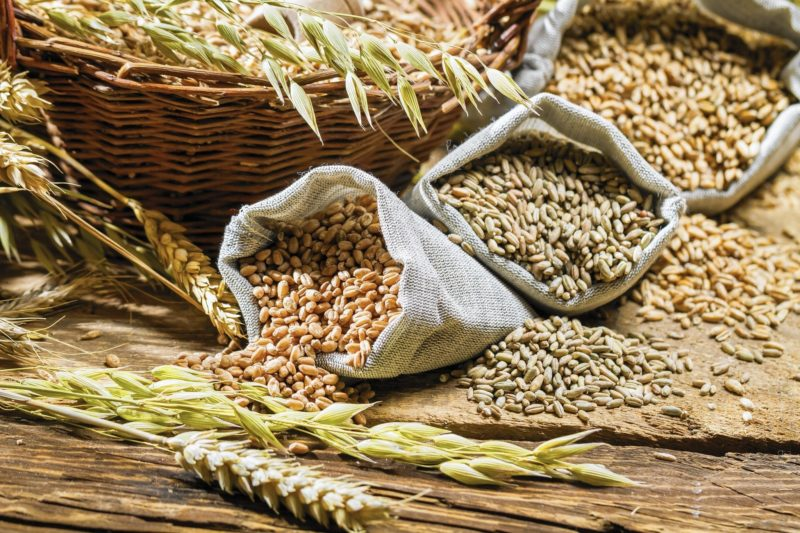 Площади посева, урожайность, производство, а также экспорт и импорт зерновых странами мира