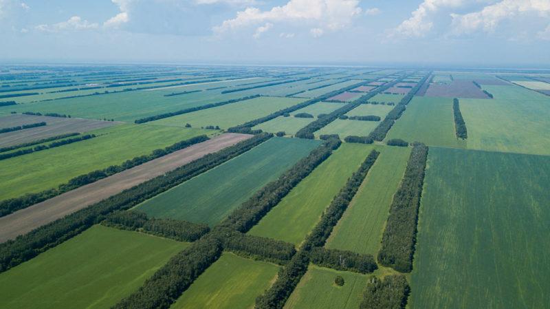 Ландшафтная организация территории и агроценозные провинции