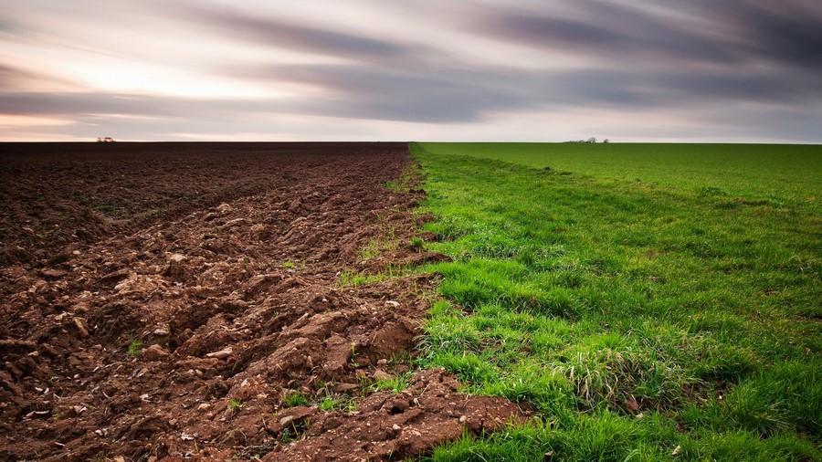 Строение земли, роль почвенного покрова в ее жизни