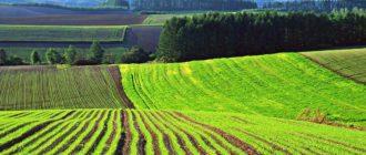 Состояние земельных ресурсов
