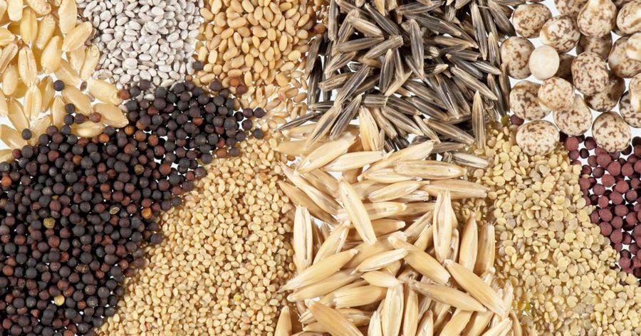Резервный фонд семян