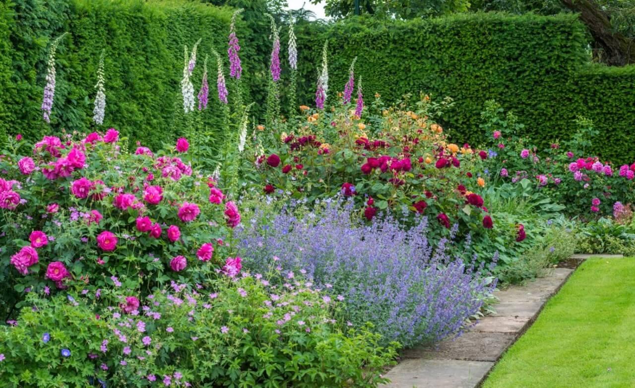 сад ароматических растений