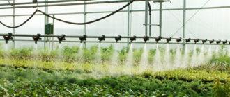 Автоматические системы полива растений в теплице