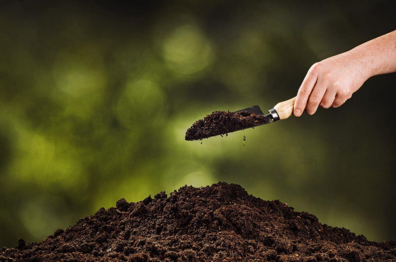 Бонитировка почв