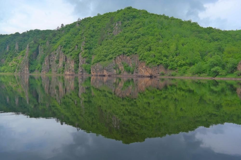Бурые почвы (буроземы) широколиственных лесов