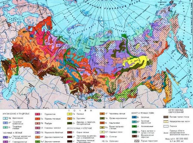 Виды почвенных карт и картограмм