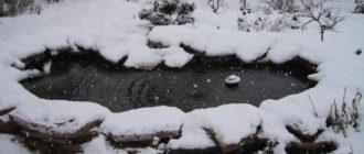 Подготовим пруд к зиме