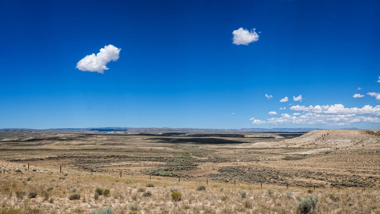 серо-бурые пустынные, такыры, песчаные пустынные и такыровидные