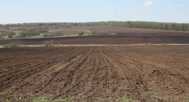 Серо-коричневые почвы сухих субтропических степей
